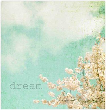 dream 1