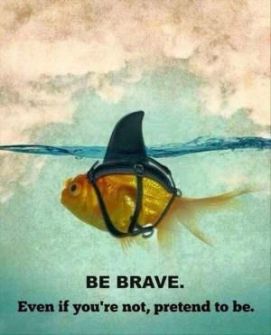 Brave6