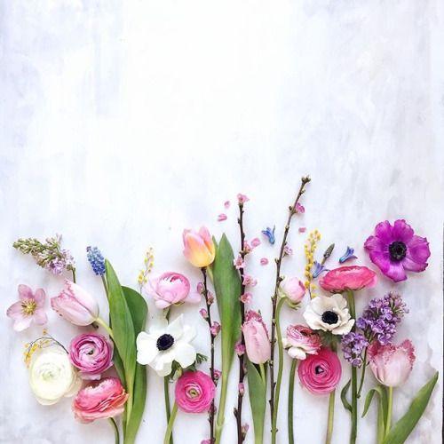 flowers100